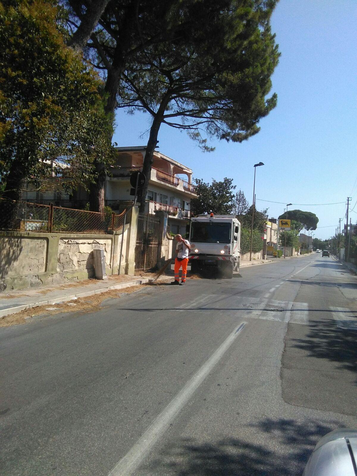 Spazzamento manuale e meccanizzato Via Benedetto Brin